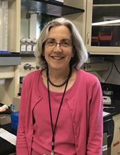 Lead researcher Ann Falsey, M.D.