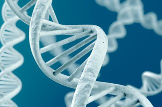 digital image of DNA
