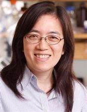 head shot of scientist Yi-Fen Lee