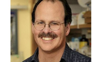 Wilmot Cancer Stem Cell Scientist Featured in NCI Bulletin