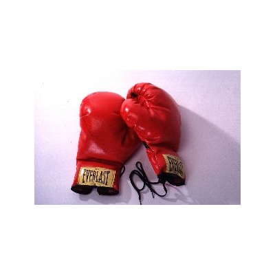boxing_gloves_309