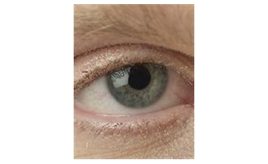 Researchers Study Improving Life for Those with Macular Degeneration