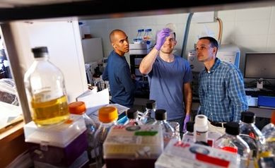 Hot Topic: Manipulating Cell Metabolism to Attack Cancer