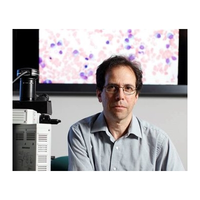 Lymphoma: Looking for Clues in the Immune System