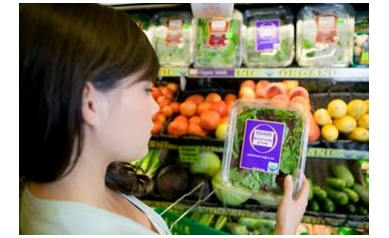 To Go Organic, or Not to Go Organic: That Is the Question