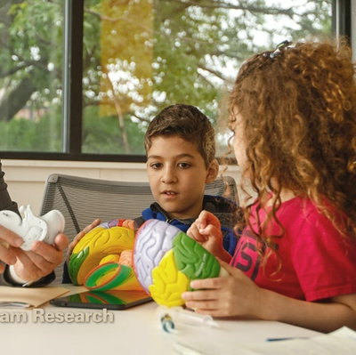 Intellectual and Developmental Disorders: Creating a Model System