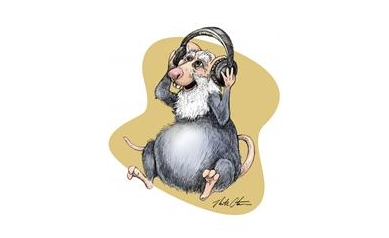 MouseHearingSmaller_2680_3501x4503