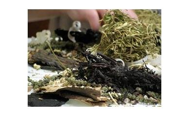 herbs_2877_1603x1165