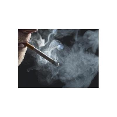 smoking2_3357_732x532