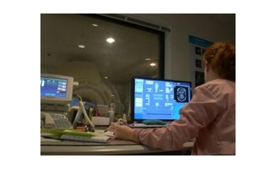 MRI%20brain%20web_3486_386x281