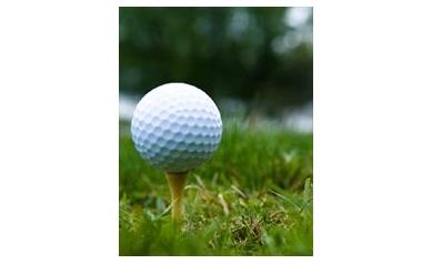 golf2012_3496_233x300