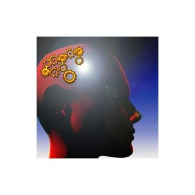 brain%203_3540_369x369