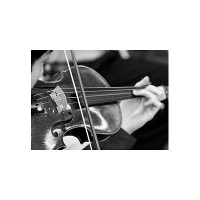 1006075528_violin_3733_847x616
