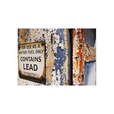 1104366296_lead%20warning%20web_3823_462x336