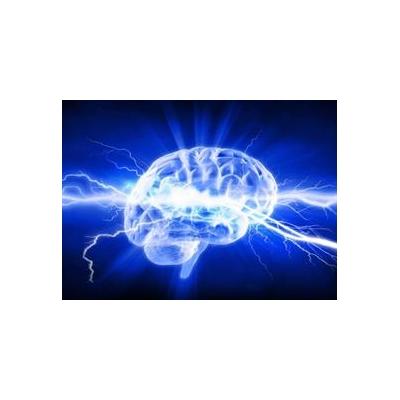 1708480461_brain%20storm%20web_3969_446x324
