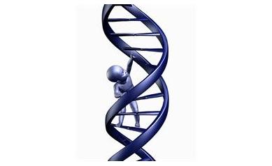 1546076694_DNA_4202_1358x1746