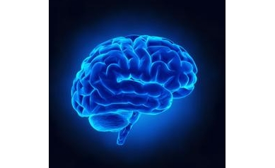 1626135966_Brain_4306_394x394