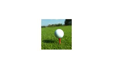 1436206704_golf%20tournament%20thumbnail_4365