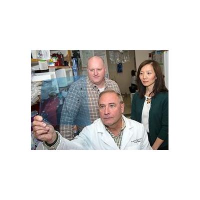 UR Scientist Wins Novo Nordisk Award to Develop Obesity Drug