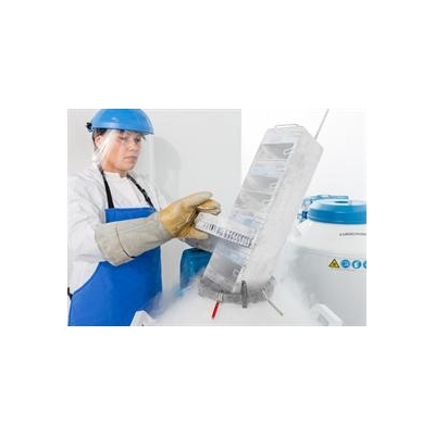 1253473311_Indivumed-tissue%20bank1-2016_4489_1082x787
