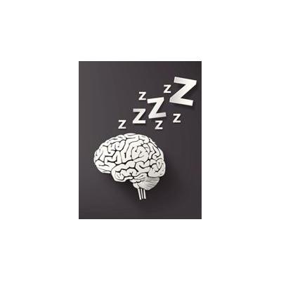 1420481192_sleep%20brain_4559_344x442