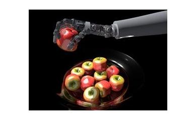 1302296622_robotic%20hand_5197_463x337