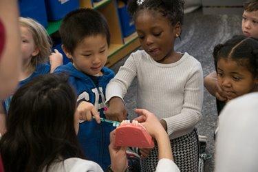 Kids brushing tooth model