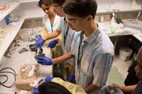 students making molds