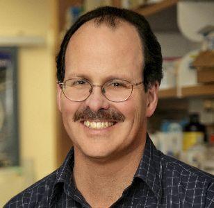Dr. Craig Jordan