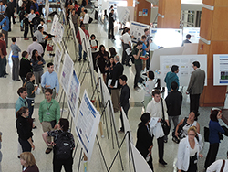 Research Symposium