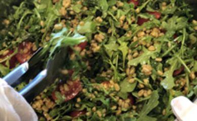 Farro, Cherry Tomato and Arugula Salad