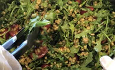 Farro, Cherry Tomato and Arugula Salad