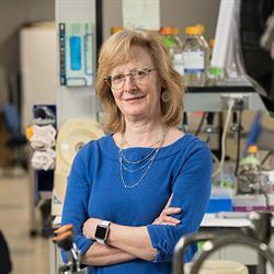 Lisa A. Beck, M.D.