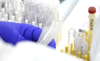 UR Medicine to Begin COVID-19 Antibody Testing Monday, June 1