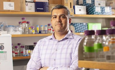 Fresh Faces, New Energy: Stephano Mello, Ph.D.
