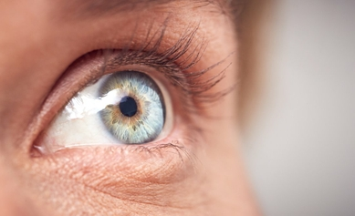 New Research Sheds Light on Vision Loss in Batten Disease