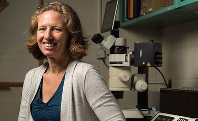 Professor Studies Complex Brain Networks Involved in Vision