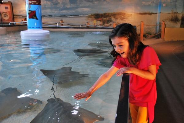 Florida Aquarium_Stingray Beach