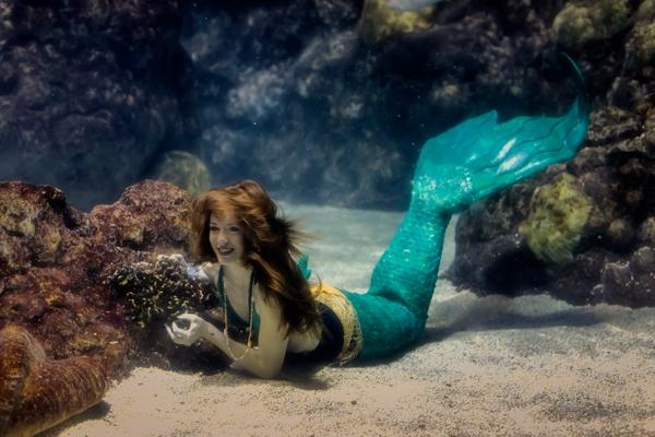 dtaq mystic mermaids 335
