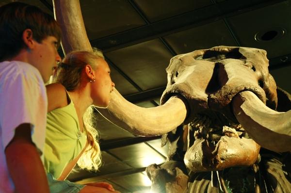 Children under mammoth