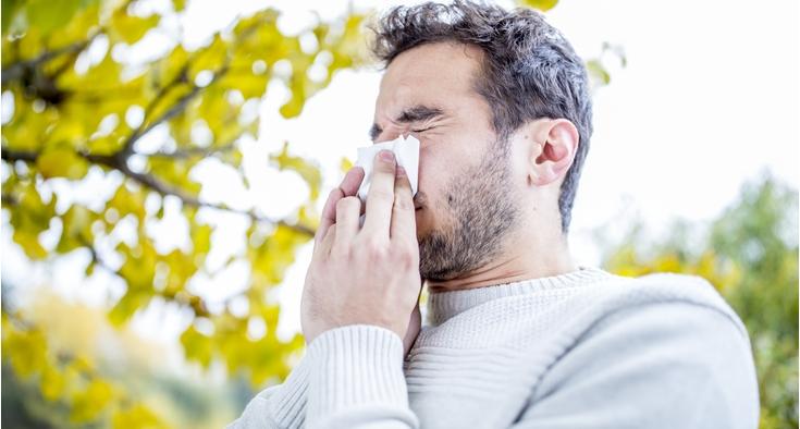 allergies cold flu sneeze