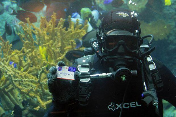 Underwater AAA Card