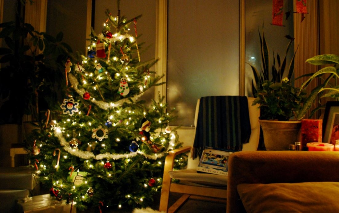 Christmas Tree at Home by Laura LaRose