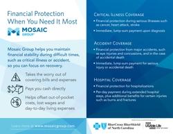 About Mosaic