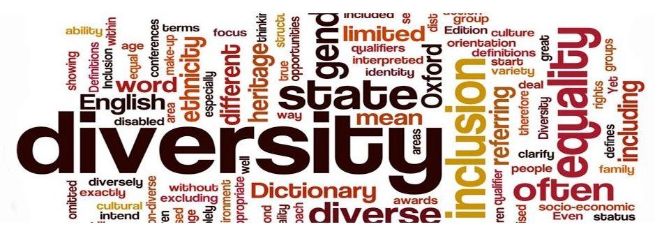 diversity-blog-wordle-1200x300