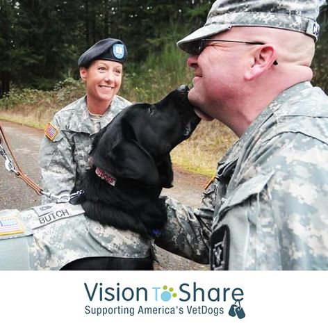 Vision to Share