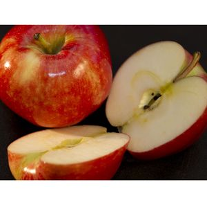 Apple - Gala, whole with sliced, red