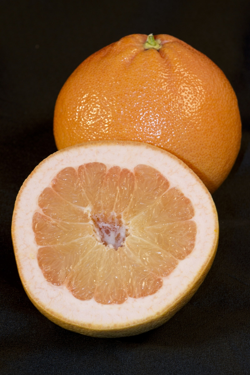 Grapefruit - whole with half