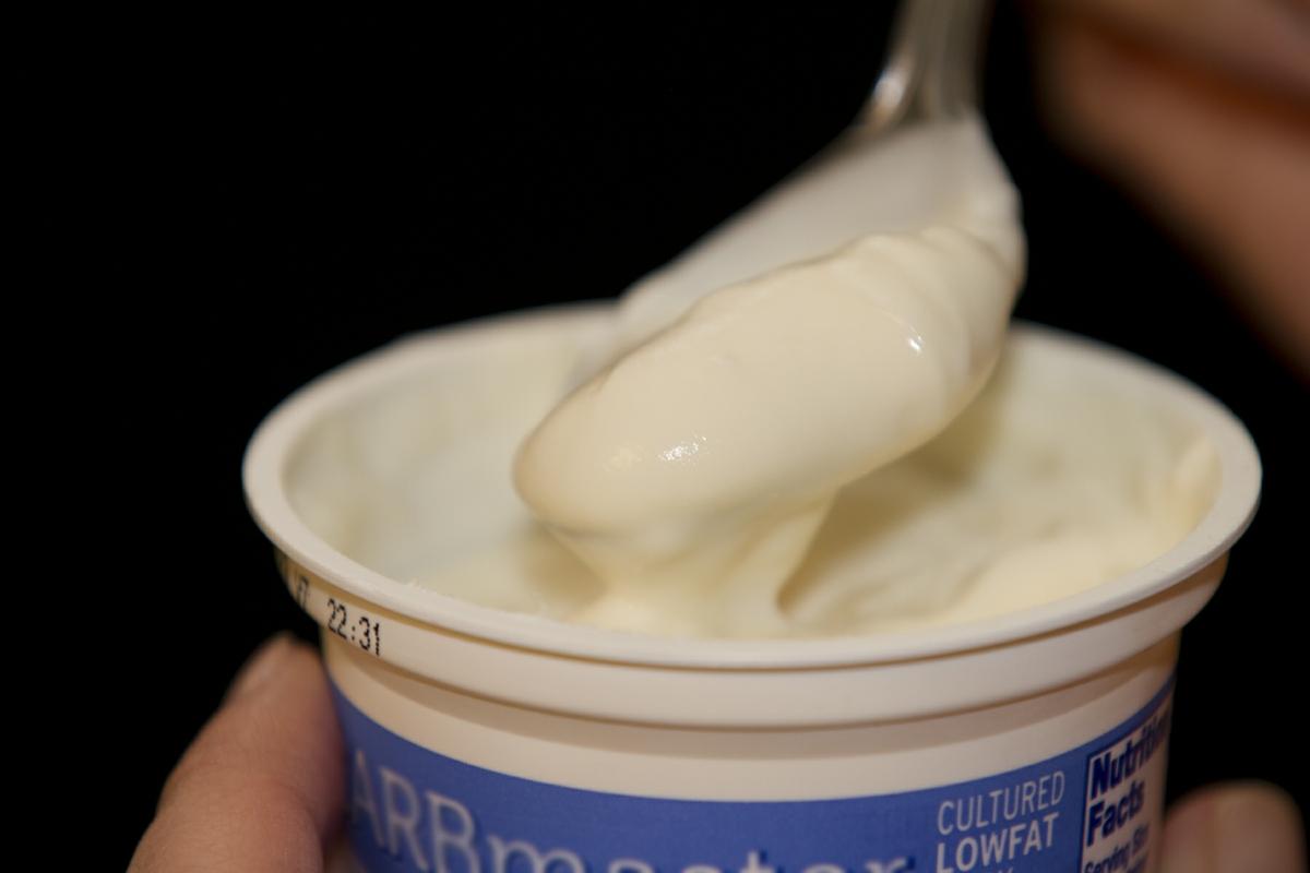 Yogurt LowFat plain in cup held on spoon close up horizontal