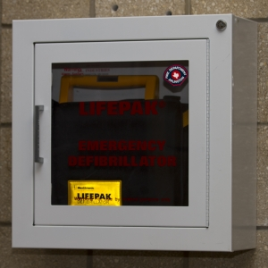 AED - Wall Mounted Horizontal